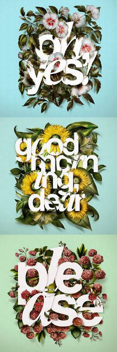 40 Floral Typography Designs That Combine Flowers & Text Cards by Antonio Rodrigues Jr