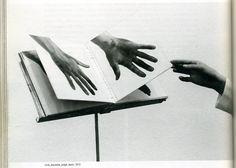 arpeggia:  Giuseppe Penone