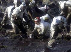 La exposición al chapapote del Prestige causa daños en el ADN de los voluntarios