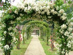 images of gardens landscape - Bing Images