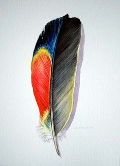 Parrot Feather Original Watercolor Study by jodyvanB on Etsy
