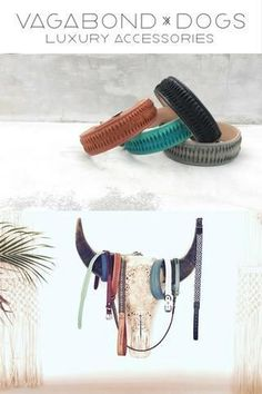 This is my boho bohemian dog collar and dog accessories collection for Vagabond-Dogs.com     You aren't boring.  Your dog accessories shouldn't be either. Puppy Obedience Training, Basic Dog Training, Dog Training Videos, Training Your Puppy, Training Dogs, Luxury Dog Collars, Dog Toilet, Positive Dog Training, Easiest Dogs To Train