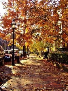 """I'm so glad I live in a world where there are Octobers."""""""
