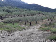 Руральный отдых в Испании - городок Кастелль де Кастелльс Mountains, Nature, Travel, Trekking, Naturaleza, Viajes, Destinations, Traveling, Trips