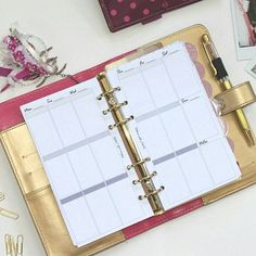 Michael's new line of planners does not come with weekly planner pages. Try mine! Here is my new recollections planner with my vertical undated inserts in personal size. They fit in nicely!