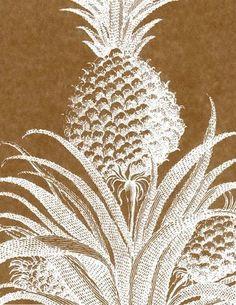 Pineapple Print Wallpaper | ... printworks white kraft 712891 749454 Pineapple Fabrics and Wallpaper