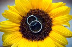 Sunflower Wedding Inspiration :  wedding Wedding Rings Sunflower
