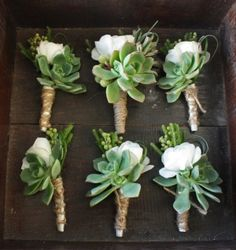 Rose and Succulent boutonnieres (with the rose either white or the peachy color).