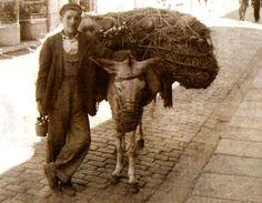 """¡El botijero! ¡Botijos que hacen el agua fresquita! ¡El botijero!"""". Recorrían las calles con su cargamento de barro cuidadosamente alojado entre pajas a lomos de un viejo borriquillo.    En las fechas próximas a las matanzas, llegaban vendedores de especias como pimentón, canela, clavo, orégano, alcaravea, pimienta o laurel."""