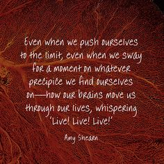 Even when we push ourselves to the limit, even when we sway for a moment on whatever precipice we find ourselves on—how our brains move us through our lives, whispering 'Live! Live! Live!' — Amy Shearn