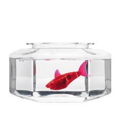 HEXBUG Aquabot with Fishbowl $12.99 @ Radio Shack - HotDeals  Check us out at www.hotdeals.com or on fb! Www.facebook.com/hotdealscom