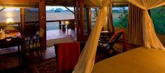 #safari #botswana #linyanti savuti area #selinda camp #travel #honeymoon