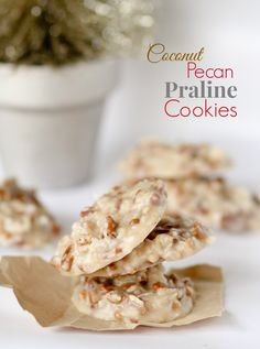 No Bake Coconut Pecan Praline Cookies recipe. They are SO simple to whip up (no baking!) and have the perfect texture and taste — praline-ey, pecan-ey, and coconut-ey. These are officially a new Holiday staple around here. Candy Recipes, Sweet Recipes, Baking Recipes, Cookie Recipes, Dessert Recipes, Just Desserts, Delicious Desserts, Yummy Food, Yummy Cookies