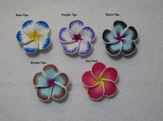 45mm Beautiful Hawaiian Plumeria Frangipani Polymer by jeepgrl99