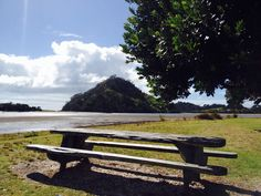 Pataua inlet Outdoor Furniture, Outdoor Decor, New Zealand, Places Ive Been, Bench, Park, Parks, Desk, Backyard Furniture
