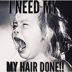 hair humor hair humor _ hair humor hilarious _ hair humor funny _ hair humor hairstylist _ hair humor meme _ hair humor quotes _ hair humor funny hilarious _ hair humor hilarious so funny Hairstylist Memes, Hairdresser Quotes, Hair Salon Quotes, Hair Quotes, Humor Mexicano, Hump Day Humor, Monday Humor, Monday Quotes, Work Quotes