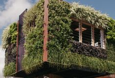 These are awesome, we need more like these, everywhere.  Solar Panels and Living Walls