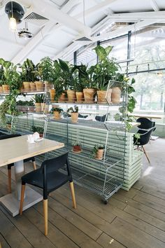 Gallery of Bulka Cafe and Bakery / Crosby Studios - 12