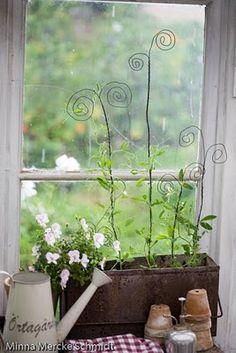 Kitchen garden. Love the plant stakes.