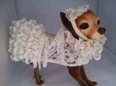 Dog Wedding Dress with Veil by by FiercePetFashion on Etsy