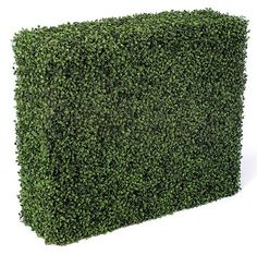 """<p>a-0510</p><p>Plastic Life Like Boxwood Hedge Indoor/Outdoor Hedge -5 sides -green -30 """" height --36 """" width --12 """" depth (Featured on NBC The Today Show)!</p> <p><b><font color=""""#FF0000""""><a href=""""http://today.msnbc.msn.com/id/19828071/""""> <font color=""""#FF0000"""">Click here See our feature on the Today's Show.<%2..."""