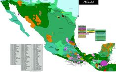 Linguistic map of Mexico