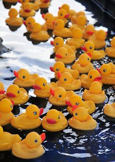 yellow ducks : it is so hot now in HK