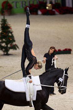 Coaching, Trick Riding, Vaulting, Sport, Equestrian, Harem Pants, Horses, Pictures, Horseback Riding