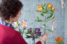 Maak een gordijn van Alstroemeria's. #mwbd #Mooiwatbloemendoen #Alstroemeria #DIY