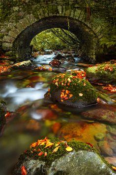 Kilkenny, Ireland in the fall