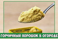 Mashed Potatoes, Ethnic Recipes, Food, Powder, Gardening, Whipped Potatoes, Face Powder, Smash Potatoes, Essen