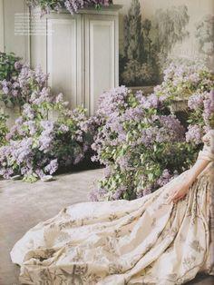 lilacs, Tim Walker
