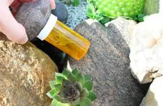 12 unusual ways to reuse your old jars of pills