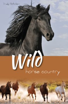 Book 3 Wild Horse Country Released April 2014 by CP Books Nelson, NZ  club.whitecloud@vodafone.co.nz