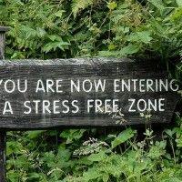 Be stress free!