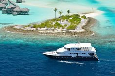 Maldives Liveaboard Special Offer - MY Anastasia - US$199 Per Person Inclusive Of Tax - http://www.diveguide.com/forums/showthread.php?21206-Maldives-Liveaboard-Special-Offer-MY-Anastasia-US-199-Per-Person-Inclusive-Of-Tax