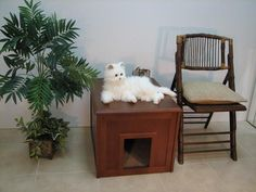 Crown Pet Products Cat Litter Cabinet with Mahogany Finish