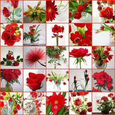 Red arrangements - some favorites | Flickr - Photo Sharing!
