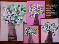 Kvetoucí strom - 1. třída