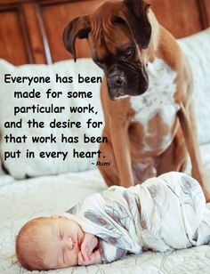 Everyone has been made for some particular work, and the desire for that work has been put in every heart. ~ Rumi