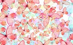 Butterfly Wallpaper Free Desktop Wallpapers Pc Backgrounds