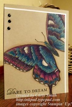 By Chris Smith. Stampin' Up Swallowtail stamped on kraft and colored with watercolor pencils.