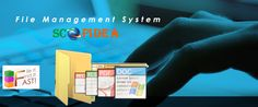 File Management System is methodology to preserve the information's and important documents of business records. This makes it so that when you have documents and Files need to use them, you are able to do so. File Management System, Preserve, Business, Free, Chow Chow, Store, Business Illustration, Butter
