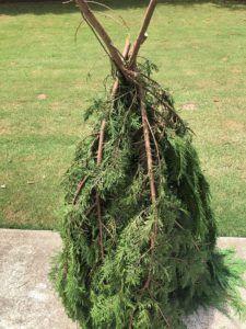 DIY Gnomes - The Shabby Tree Dollar Store Christmas, Christmas Crafts, Christmas Ideas, Christmas Urns, Christmas Kitchen, Christmas Stuff, Christmas Humor, Handmade Christmas, Holiday Ideas