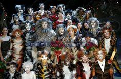 Reni van Maren Cats That Dont Shed, Cat Sketch, Cats Musical, Sketches, Van, Halloween, Fandom, Musicals, Board