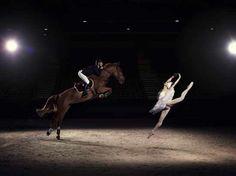 caballos ballet - Cerca con Google