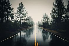 This photo is about: Forest, landscape, haze . Beautiful collection of free stock photos from «The Big Photos Wallpaper Pc, Computer Wallpaper, Pattern Wallpaper, Capas Facebook Tumblr, Rain Wallpapers, 4k Wallpapers For Pc, Forest Road, Free Stock Photos, Mists