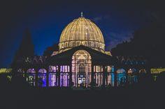 syon park conservatory - Google Search