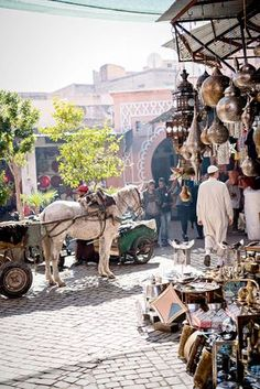 10 Amazing Things to Do in Marrakech (Marrakesh), Morocco
