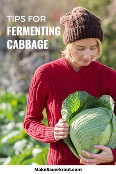 Got some cabbage in your vegetable garden? Why not make an easy homemade sauerkraut? Check out these 15 simple tips and tricks to ensure easy and successful fermentation. #probiotics #guthealth Fermented Cabbage, Fermented Foods, Homemade Sauerkraut, Fermentation Recipes, Vegetable Recipes, Vegetable Garden, Cooking Recipes, Vegetables, Simple